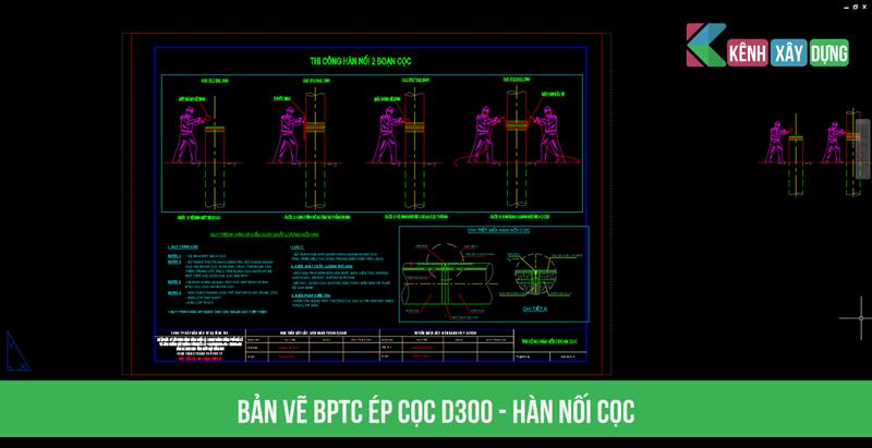 bptc-d300-4